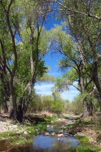 Williamson Valley Recreational Opportunities